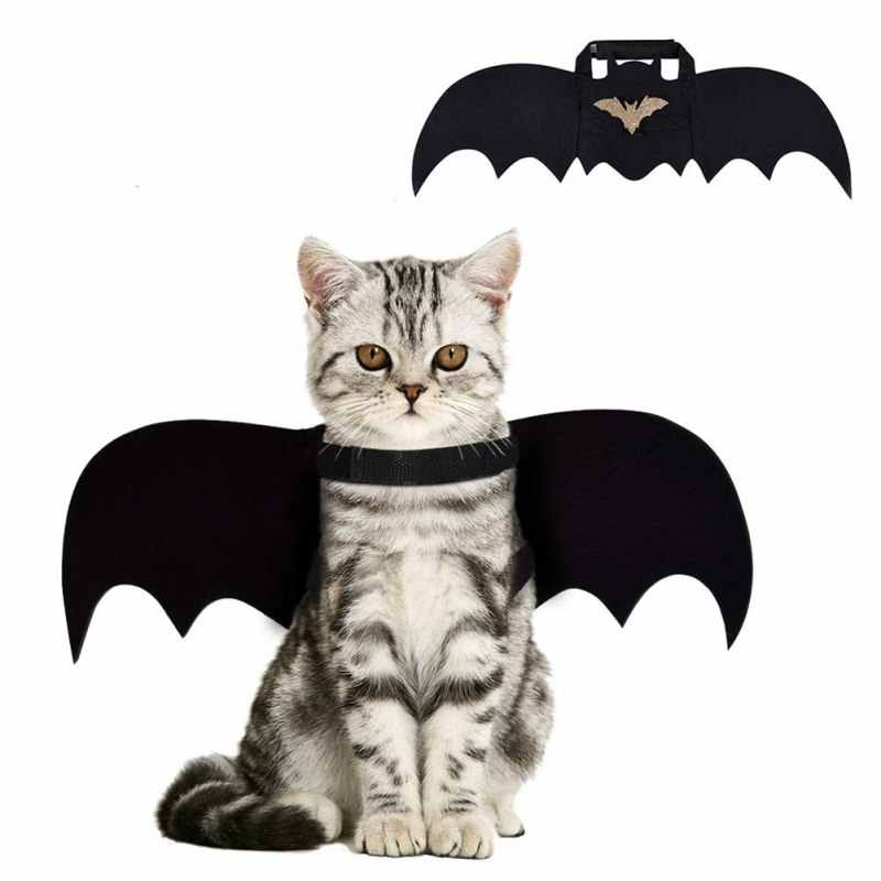 Pet Dog Cat Bat Ala Cosplay Prop Halloween Bat Costume Outfit Ali Gatto Costumi di Halloween Copricapi