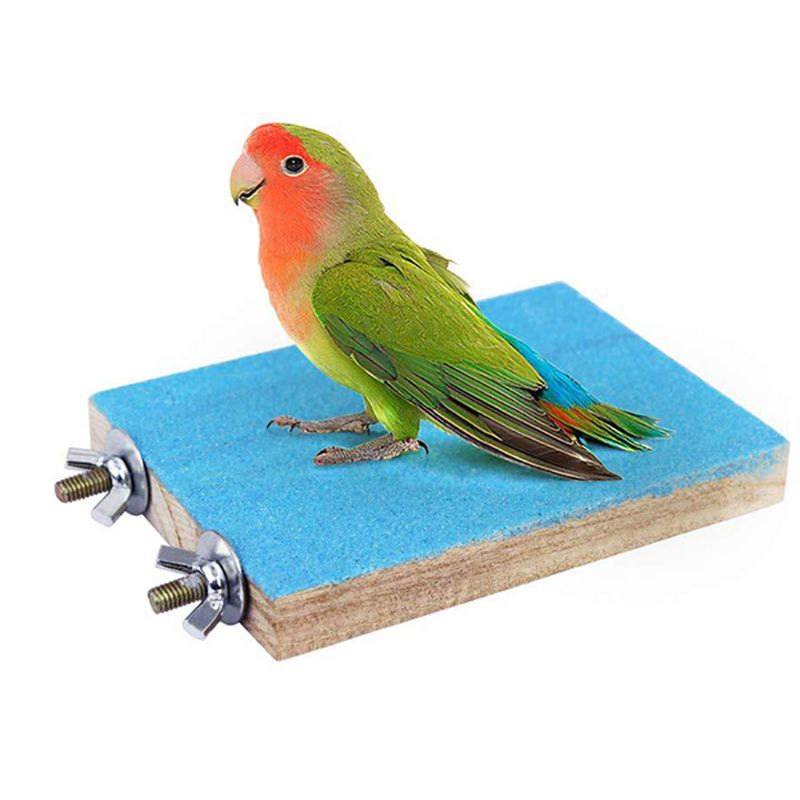 Купить с кэшбэком 8 Pack Colorful Bird Parrot Toys Swing Chewing Bite Frosted Stand Board Hanging