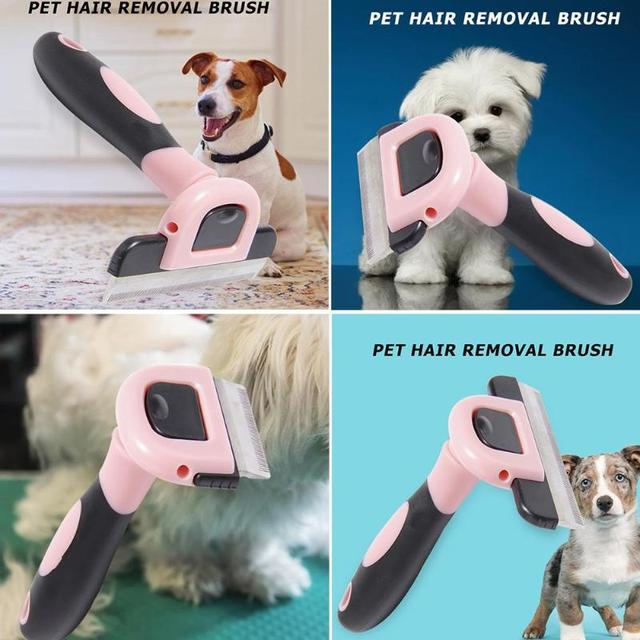 Dog Hair Remover Brush  4