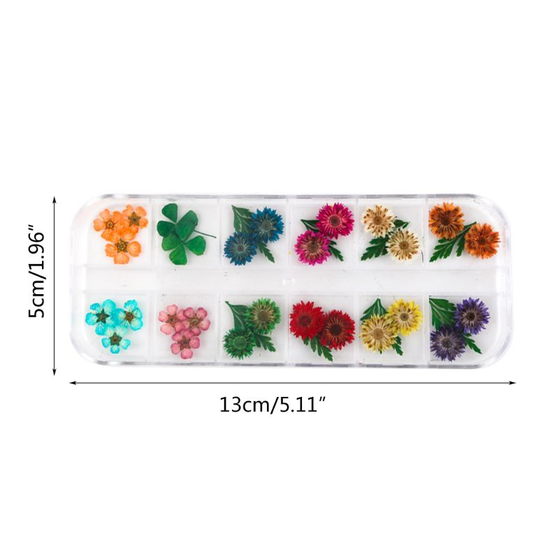 12Grid/Box Crystal Epoxy Filler Dry Flower Mixed Nail Stickers Decorations Craft