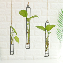 Hydroponic Vase Planter Hanging-Bottle Test-Tube Water-Iron Home-Decoration Transparent
