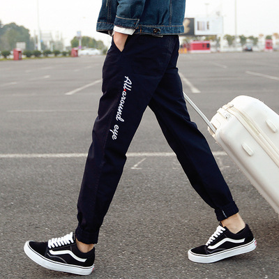 Pants MEN'S Casual Pants Students Korean-style Trend Autumn & Winter Harem Beam Leg Loose-Fit Athletic Pants Men's