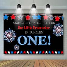 Firecracker 1st Birthday Backdrop Fourth of July  Patriotic Birthday Backdrop Red, Blue,White Independence Day Background independence day firecracker birthday backdrop 4th of july first birthday party photo background cake table decorations supplies