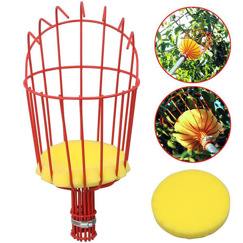 High-altitude Fruit Picker Head Without Pole Metal/Plastic Fruit Collector Harvest Picking Apple Citrus Pear Garden Hand Tools