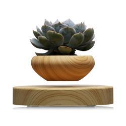 Magnetschwebe Topfpflanze Air Bonsai Topf Levitation Pflanzen Pflanzer Blumentöpfe Sukkulente Für Home Office Decor