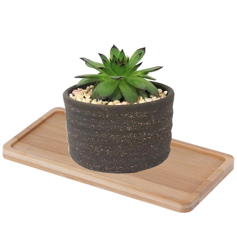Rectangle Shape Bamboo Wood Saucer Plant Tray Mini Plant Flower Pot Stand Favor