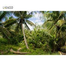 Laeacco Tropical Forest Palm Tree Green Grass Jungle Blue Sky Natural View Photography Backdrops Photo Backgrounds Studio