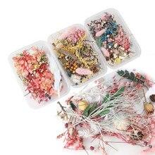 1 Box Reale Getrocknete Blume Trockenen Anlage Kerze Füllung Kerze Harz Weding Party Spezielle Decorat Machen Handwerk DIY Zubehör JU0124