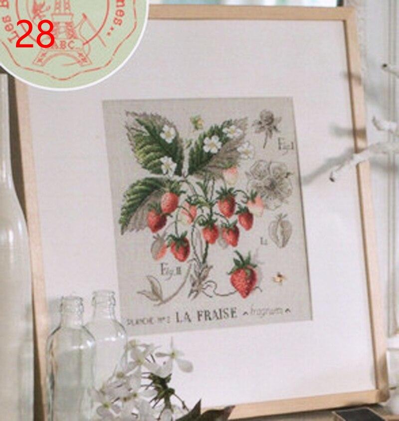 28 DFEA la fraise
