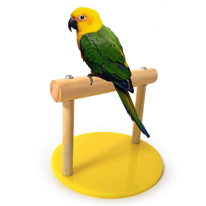 Parrot Stand For Tabletop Parrot Swing Bird Cage Toys Office Perch Stand Parrots Swing Bird Cage
