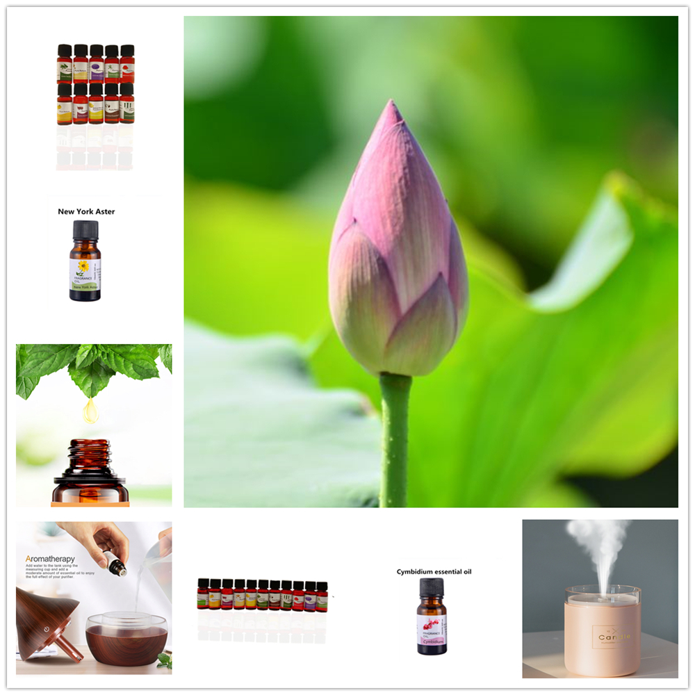 Tulips Pure Essential Oils 10ML 12 Smells Gift Set Humidifier Aromatherapy Crown of Thorns Sunflower Peony Essential Oil 1Pcs image