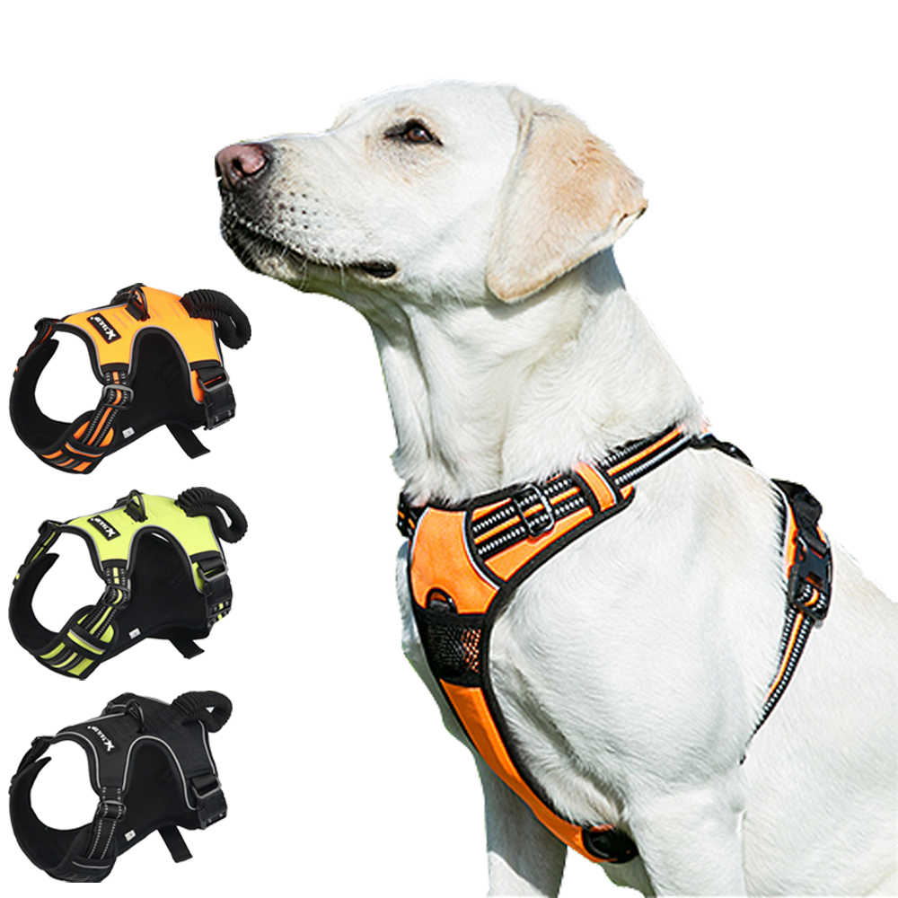 Reflective Dog Leash and Harness Set Puppy Walking Lead Dog Training Leash Highly Reflective Adjustable Dog Harness for Small Medium Dog