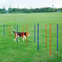 Постеры для тренировок на открытом воздухе собак