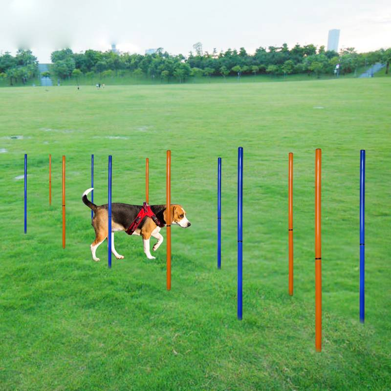 Outdoor Dog Sports Equipment Agility Barriers Training Pole Dogs Agile Sports Round Piles S Wrap Posters Pet Supplies