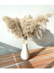 Plastic Vase Grass-Decor Dried Flowers Plants Bunch Pampas Tall Natural-Phragmites Home
