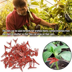 100PCS Plant Grafting Clip Plastic Gardening Tool For Cucumber Eggplant Watermelon, Round Mouth Flat Mouth Anti-fall Clamp