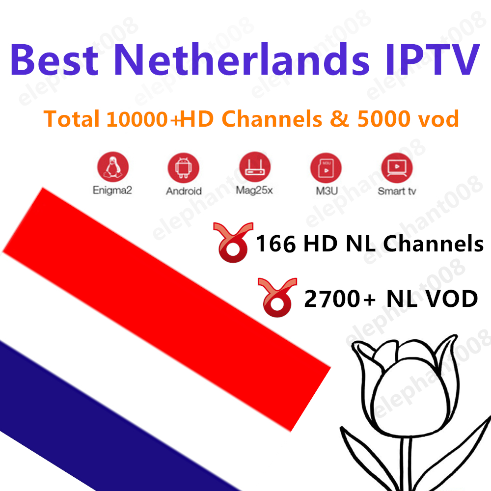 Nederlands Iptv 10000 HD Live Subscription Android Tv Box Europe France Netherlands Sweden Germany Ip Tv Dutch M3u Smart Tv Box