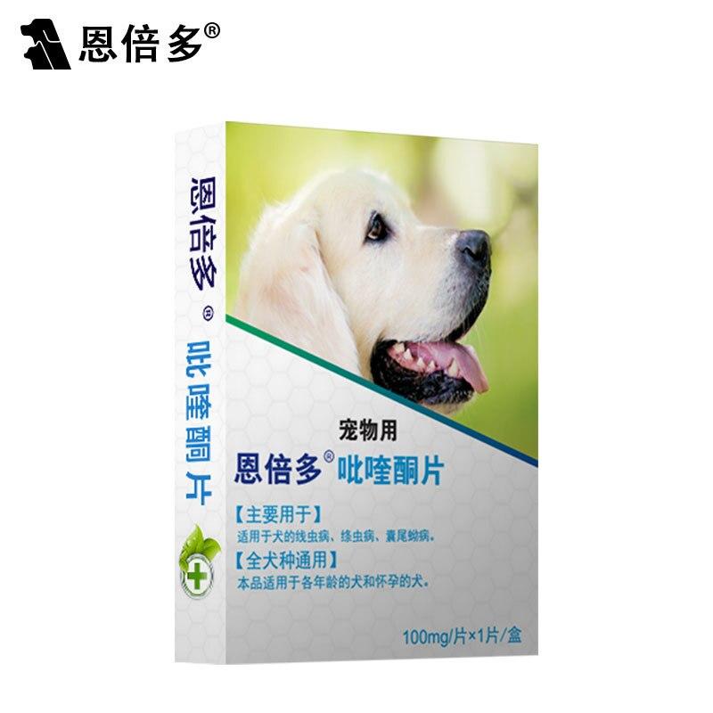 En bei Multi-Hund Große in Vivo Große chong wu yao Insektizid Hunde Hund Welpen Festland China Entwurmung Tabletten