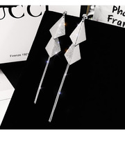 925 silver three-dimensional square temperament earrings female frosted sequins tassel personality factory direct