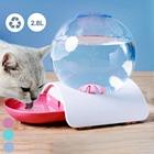 Automatic Pet Cat Do...