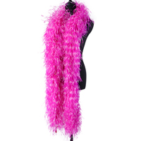 2Meters Ostrich Feathers Boa For Diy Clothing Dresses Shawl Sewing Accessories Decoration Custom 7 Colors
