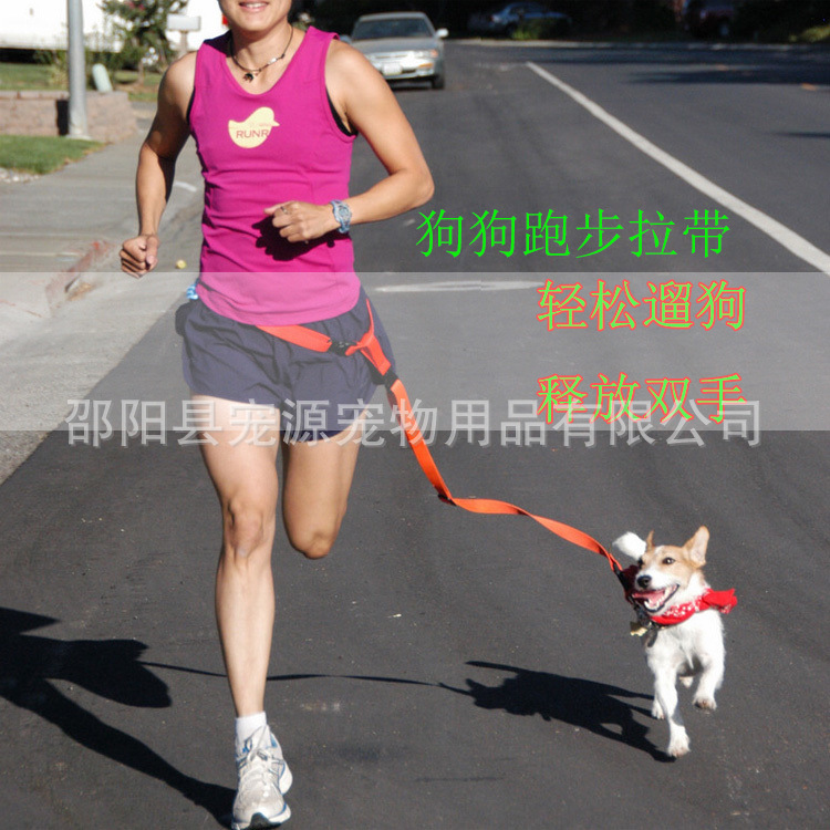 Hot Selling Pet Nylon Reflective Lanyard Running Traction Belt Pet Dog Lanyard Morning Run Hand Holding Rope Dog
