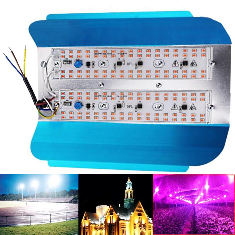 100W 50W 30W 220V 110V Led Plant Grow Light Full Spectrum LED FloodLight Reflector Flood Light Waterproof IP65 Spotlight