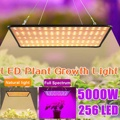 256 светодиодный s 5000W светодиодный Grow светильник полный спектр светодиодный завода светать светильник Вег лампа для цветения комнатное раст...