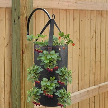 Hanging Strawberry Planter for Strawberry Bare Root Plants 2 Pack Hanging Planter for Strawberry,Non-woven fabric Plant Pots for