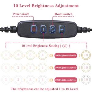 Image 4 - Orsda LED Ring Licht 10 Zoll Fotografie Dimmen ringlight Youtube 3500 5500k USB Stecker Selfie Ring Licht Mobile telefon Halterung
