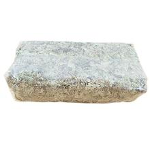 6l-Bag Substrate Soil-Mulch Dried Moss Organic-Fertilizer Phalaenopsis of