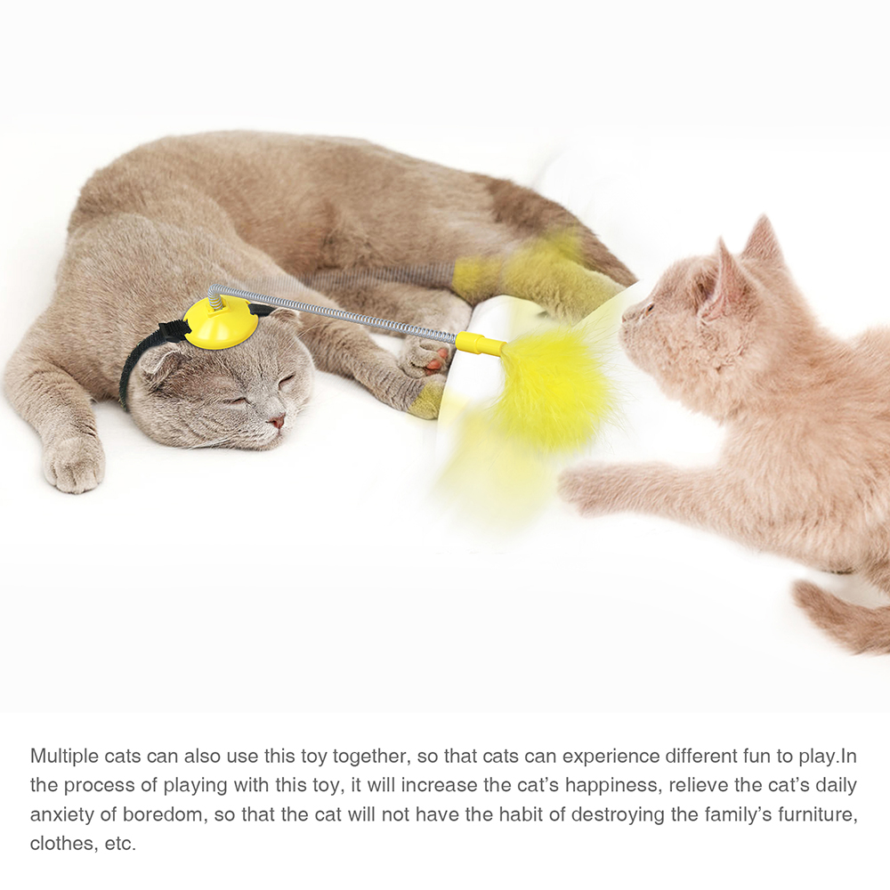 2021 New Head-Mounted Cat Toys Self Playing Interacting Pet Toy Spring and Feather Funny Cat Stick for Indoor Cats Dropshipping img2