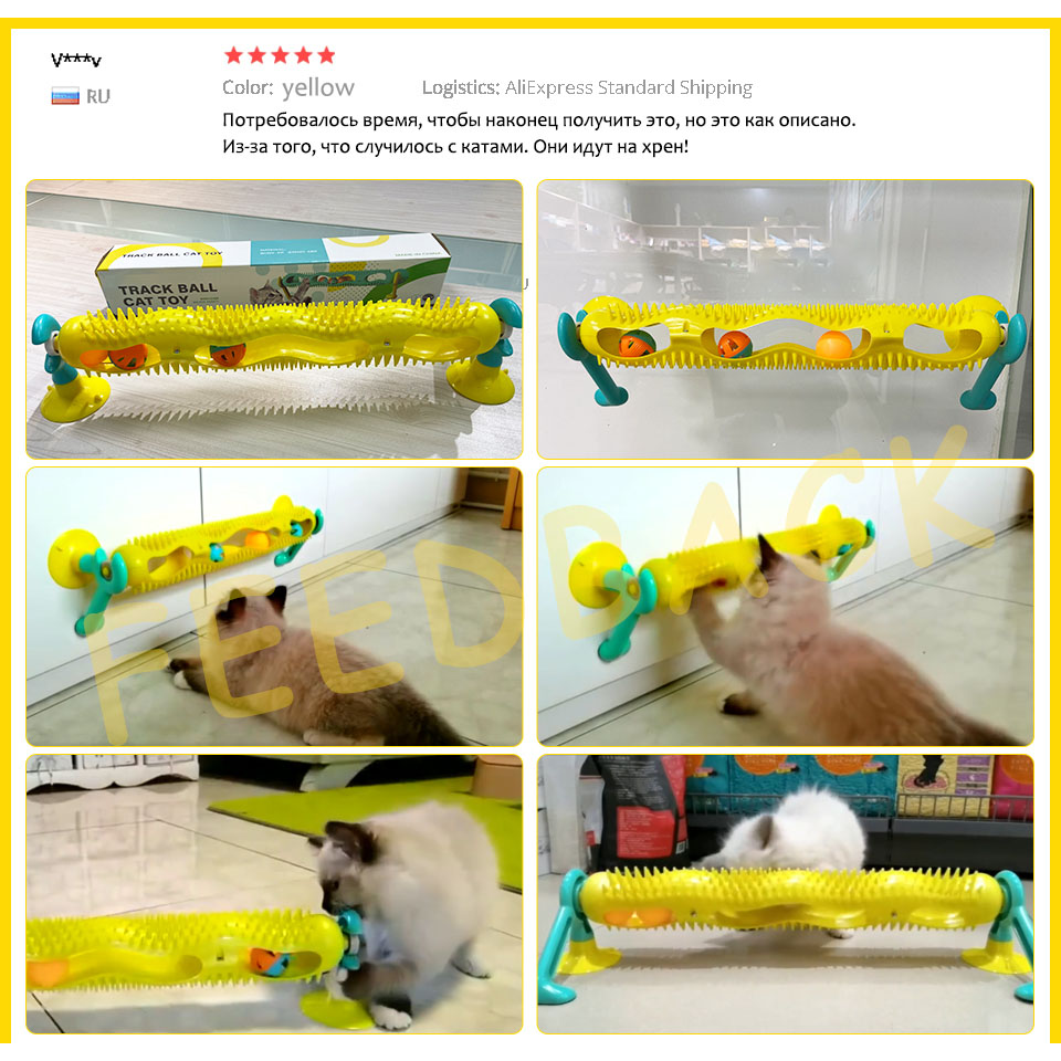 Cat Track Ball Toy with Sucker Luminous Massage Interactive Game with Catnip Window Suction Cup Trackball Intelligence Pet Toy img4