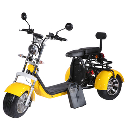 EEC High Quality EU Stock 3 Wheel Electric Motorcycle 2000W 60v40ah 2 Batteries Removable Adult Citycoco Scooter with Two Seat