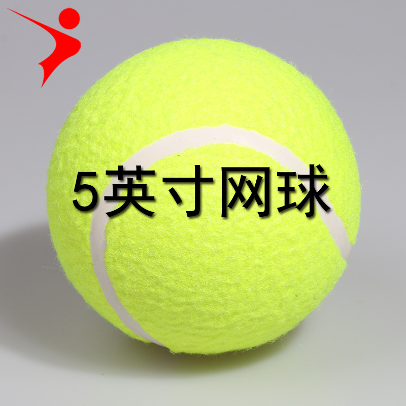 Ray Gal 5 Inch Tennis Small Inflatable Tennis Pet Tennis Toy Ball Star Signature Tennis