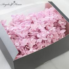 20g wieczny kwiat hortensja głowa prezent na walentynki zachowany nieśmiertelny kwiat DIY uścisk wiadro pudełko bukiet materiał domowe rzemiosło