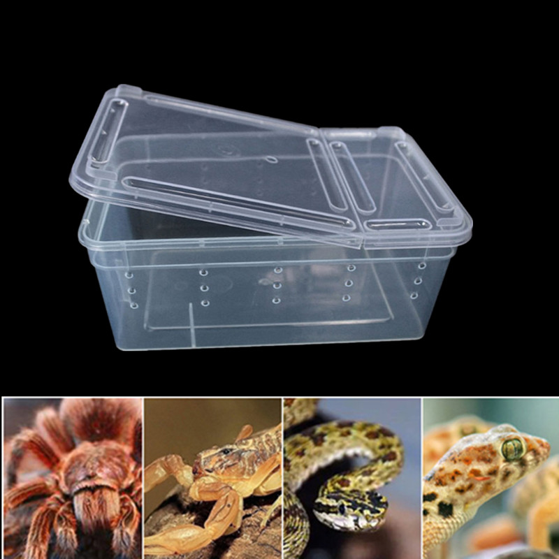 1PC S/M/L Transparent Reptiles Box Plastic Insect Pet Terrarium Transport Breeding Food Feeding Box Pet Supplies