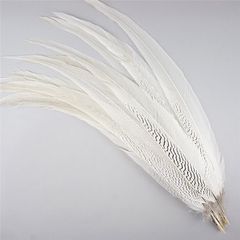 10-80CM 4-32 Natural Silver Pheasant Tail Feathers for Crafts DIY Decorations Big Lady Amherst White Silver Long Feathers Plume 10pcs lot natural ringneck pheasant tail feathers for crafts 25 75cm 10 30 wedding decorations pheasant feather plumes plumas