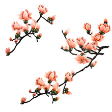 Delicate Magnolia Flowers Soluble Embroidered Patches DIY Sewing Accessories For