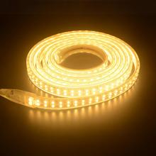 180 Leds/m SMD 2835 LED Strip 220V Lamp Waterproof Double Row LED Tape Rope Light Flexible LED light Outdoor Lighting