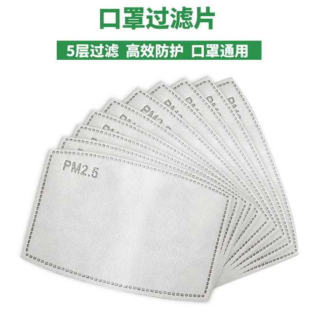 10Pcs/Lot 5 Layers PM2.5 Activated Carbon Filter Insert Protective Filter Insert for Adult Child Kids Anti Dust Face Mouth Masks 5