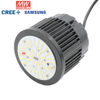 Meanwell Driver 54W Samsung Board LM301H CREE XPE 660NM 450NM RED Full Spectrum Indoor LED Grow Light for Veg and Bloom