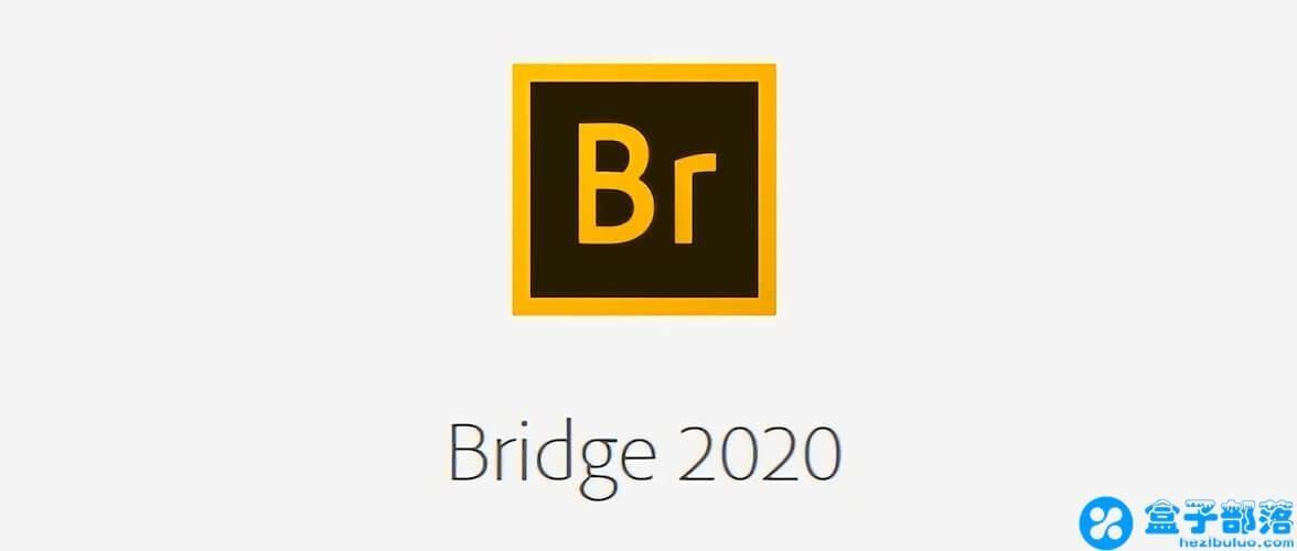 Adobe Bridge CC 2020 v10.0.2 中文完整直装版