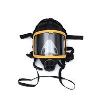 Electric Supplied Air Fed Full Face Gas Face Cover Constant Flow Respirator System Device LXY9