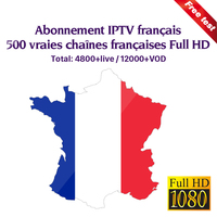 4k IPTV France Full HD 1 Year Subscription French IPTV Arabic Belgium Portugal French Sports Live For Android M3u Mag25X Enigma2