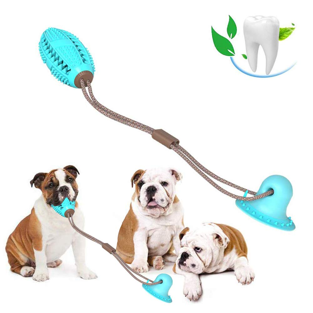 suction cup tug dog toy