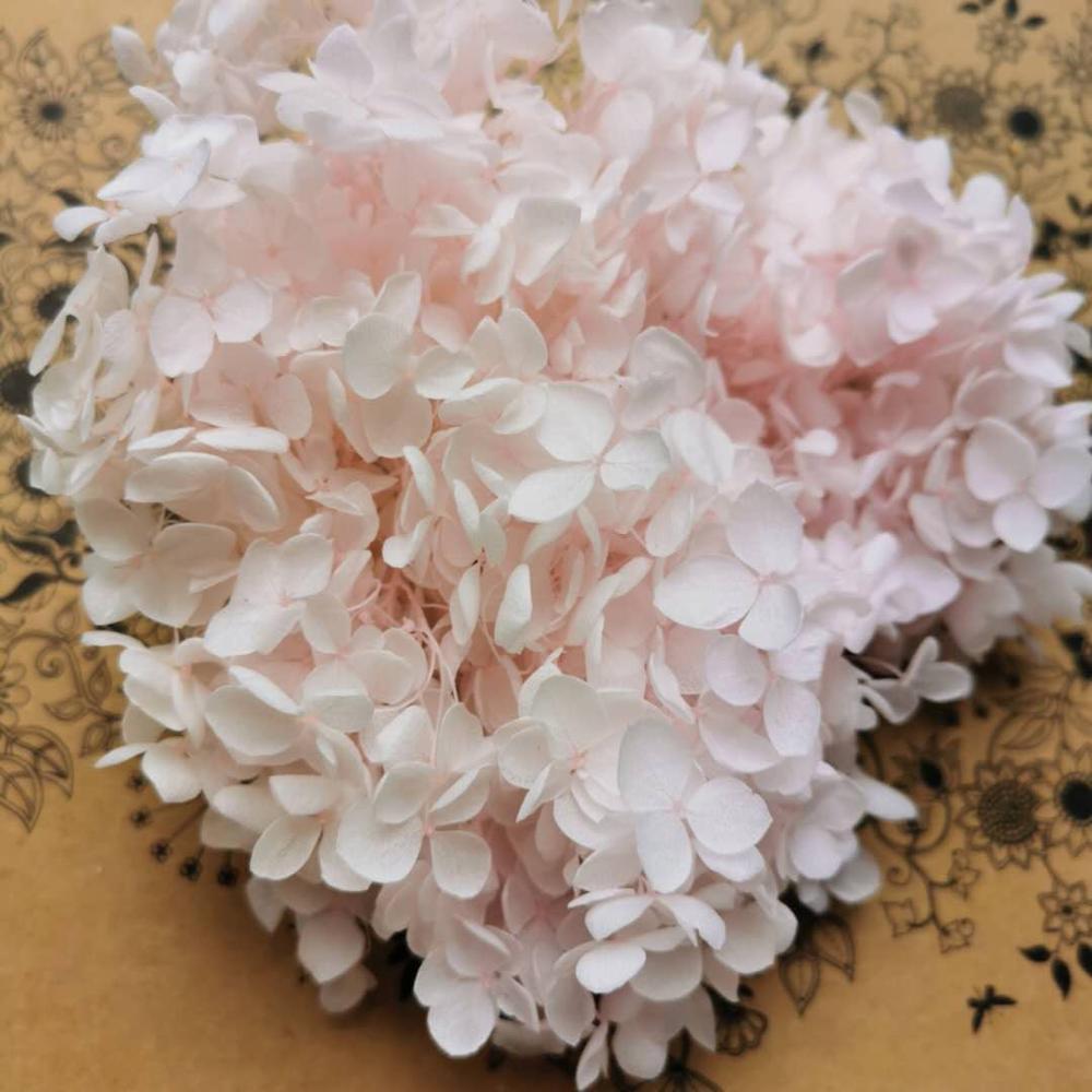 10 г/лот, высокое качество, сохраненный цветок Анны гортензии, голова цветка природы для DIY, Подарочная коробка, настоящие вечные Свадебные ве...