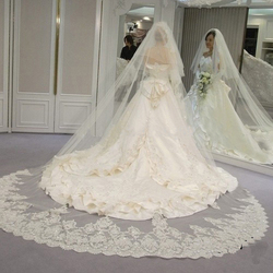 Real Photos 2 Tiers Cathedral Veil with Blusher Tier Shining Sequined Lace 5Meters Long