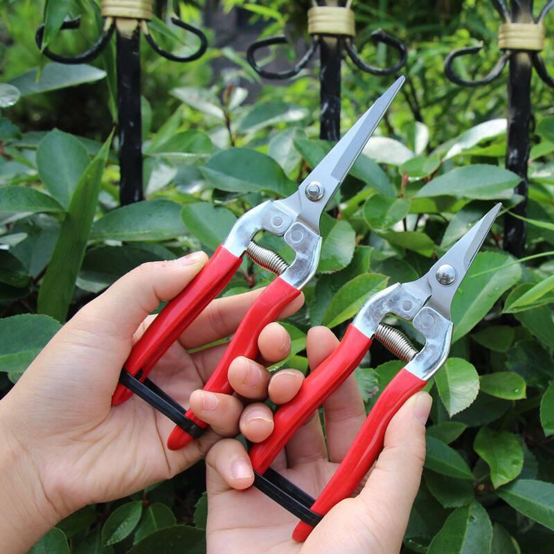 Steel Anvil Pruning Shears Garden Grass Cutter Fruit Picking Scissors Gardening Branch Pruners Secateur Garden Bonsai Tools