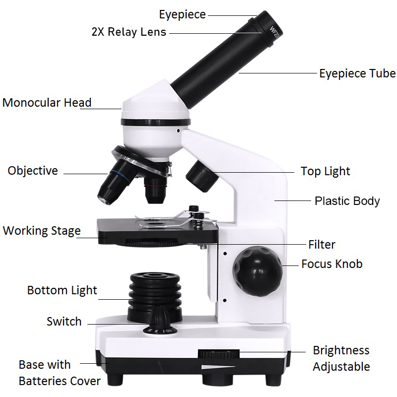 Tools : Professional Biological Microscope Compound LED Monocular Student Microscope Biological Exploration Smartphone Adapter 40X-1600X